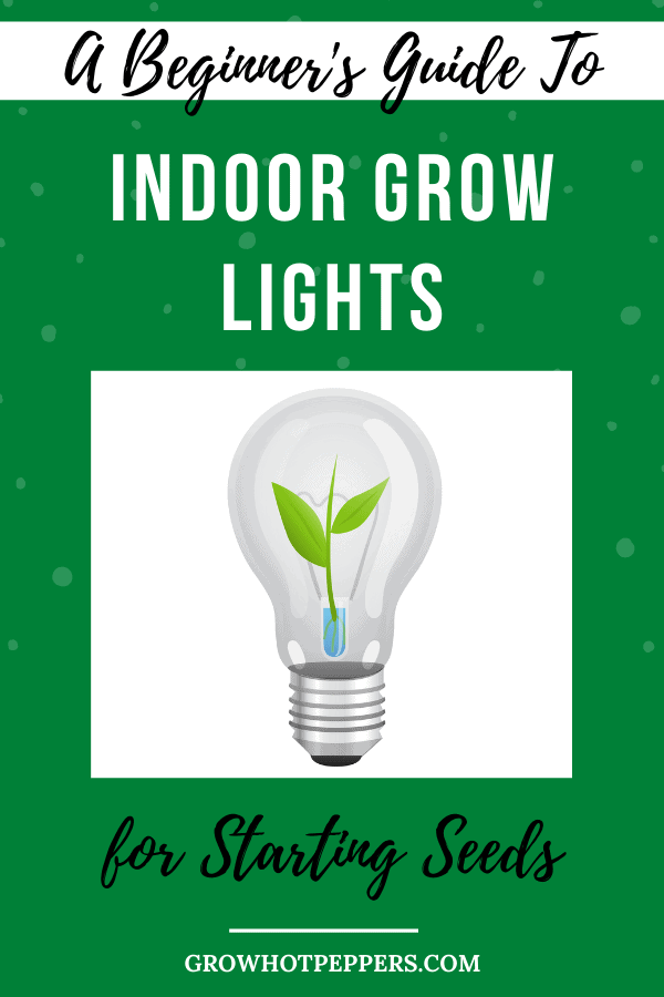 A Beginner's Guide to Indoor Grow Lights for Starting Seeds