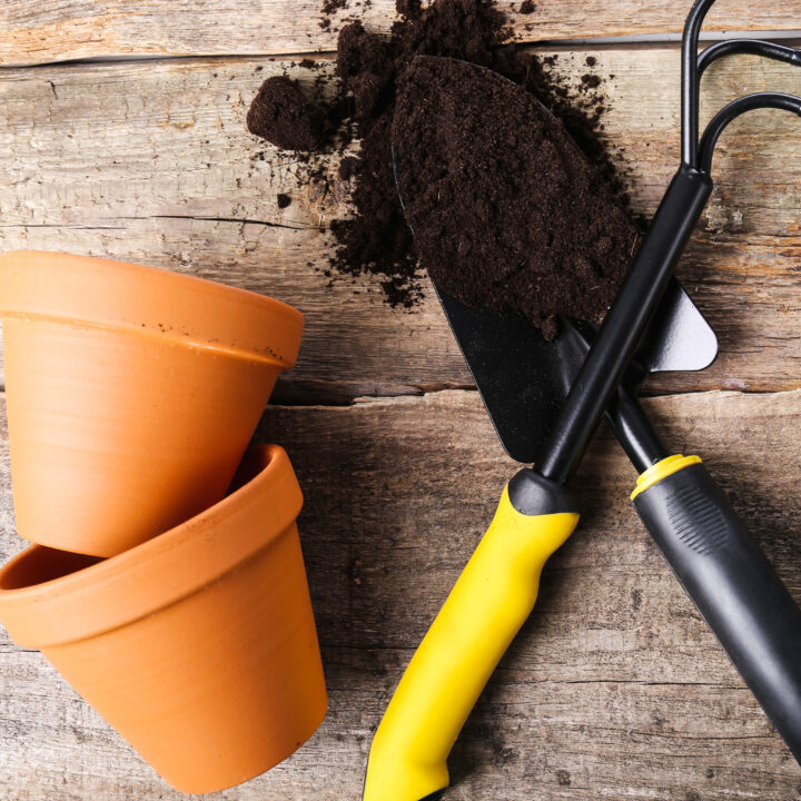 can you reuse potting soil