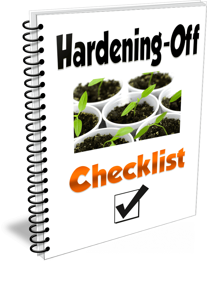 Pepper hardening-off checklist