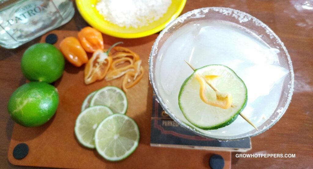 spicy habanero margarita recipe