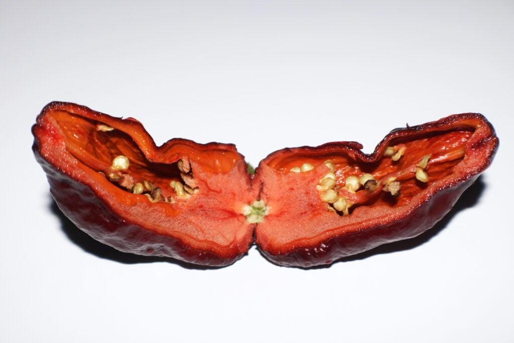 chocolate bhutlah pepper cut open