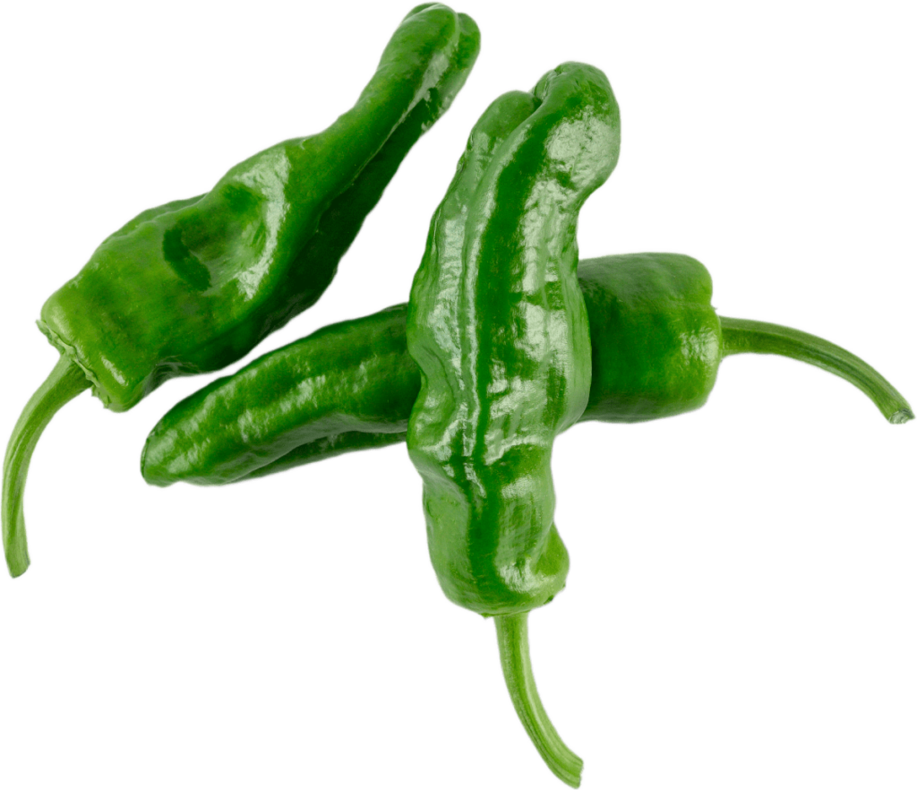 padron peppers for cooking