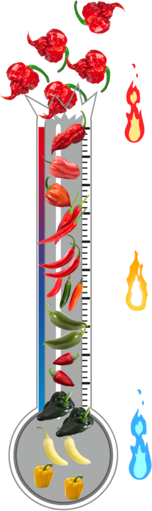 the scoville scale, copyright GrowHotPeppers.com
