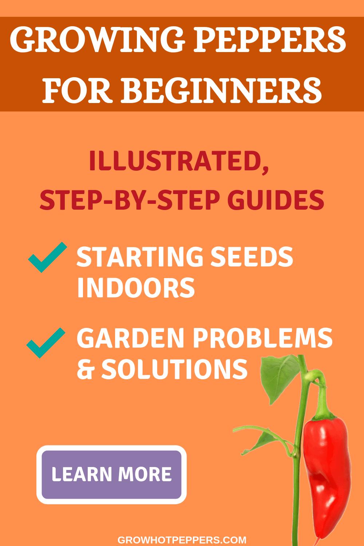 Pepper Ebooks