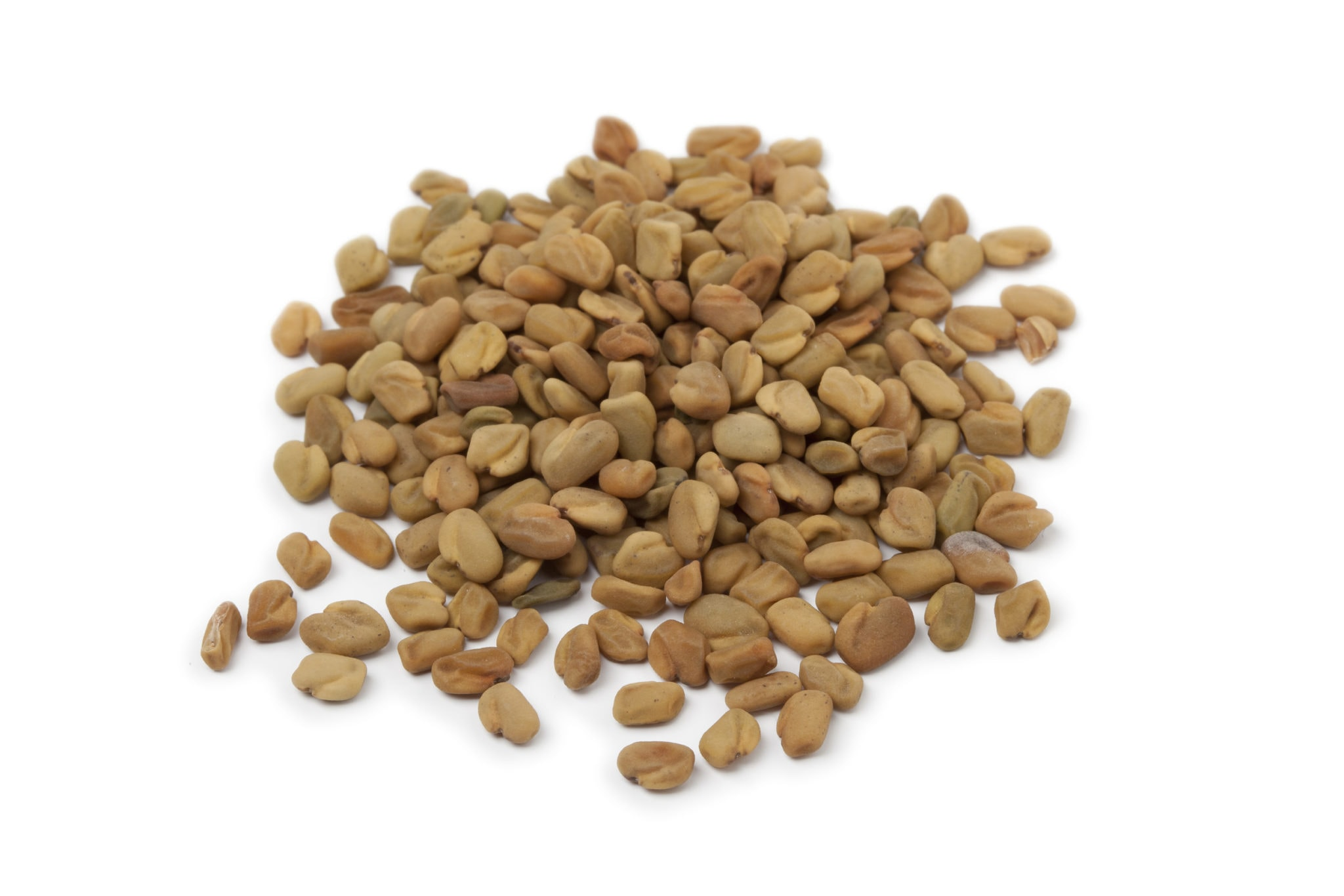 fenugreek seeds for sprouting