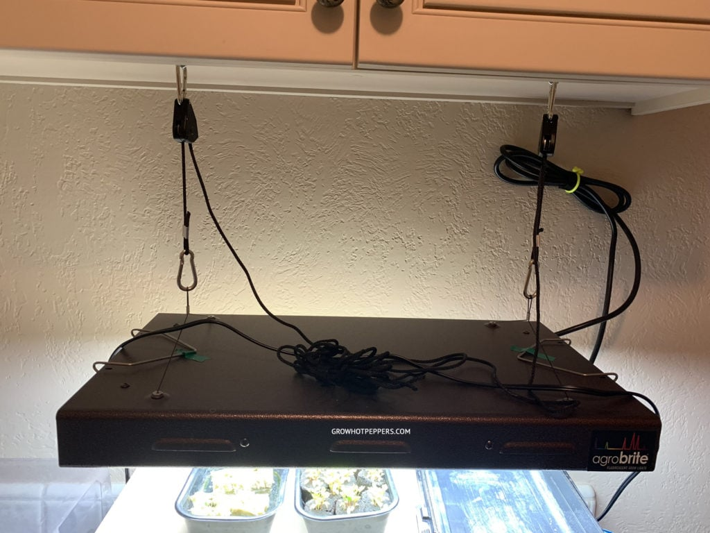 T5 hanging indoor grow light for starting seeds