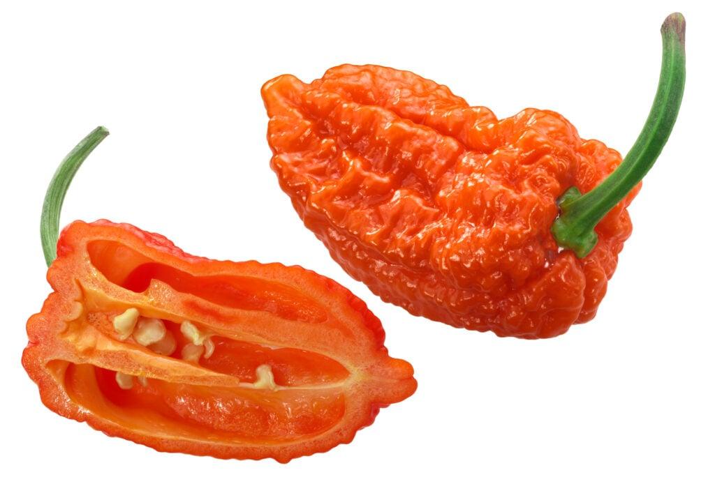 orange ghost pepper