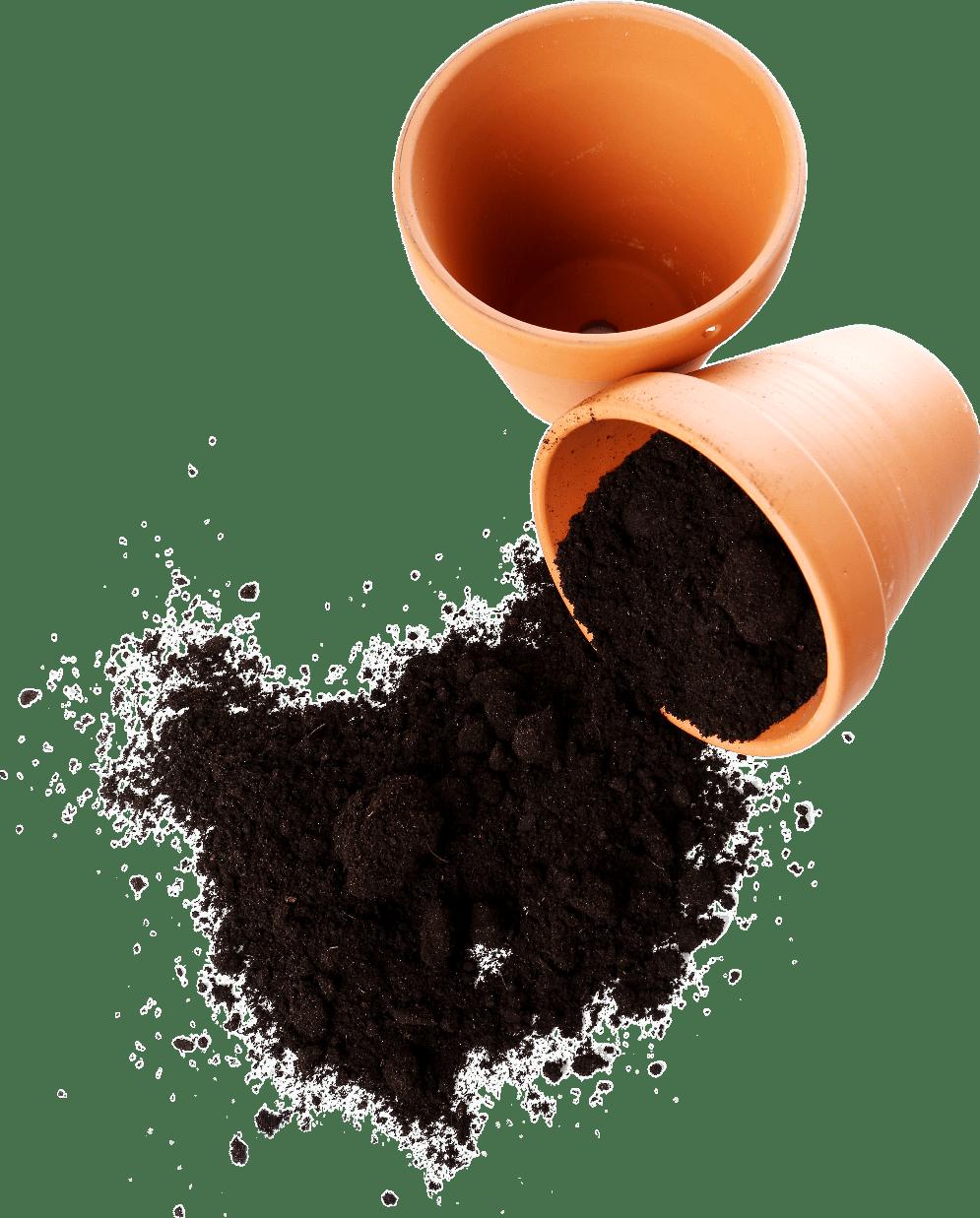 potting soil for peppers