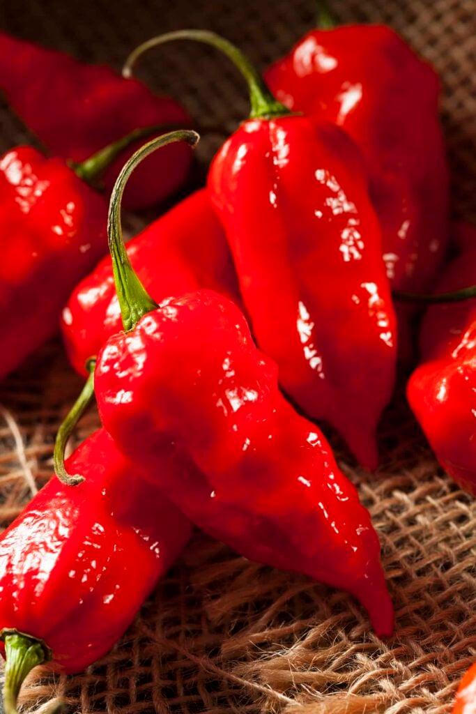 ghost pepper scoville is over 1 million SHU