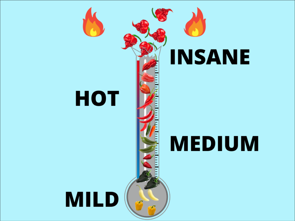 scoville scale for peppers featured image
