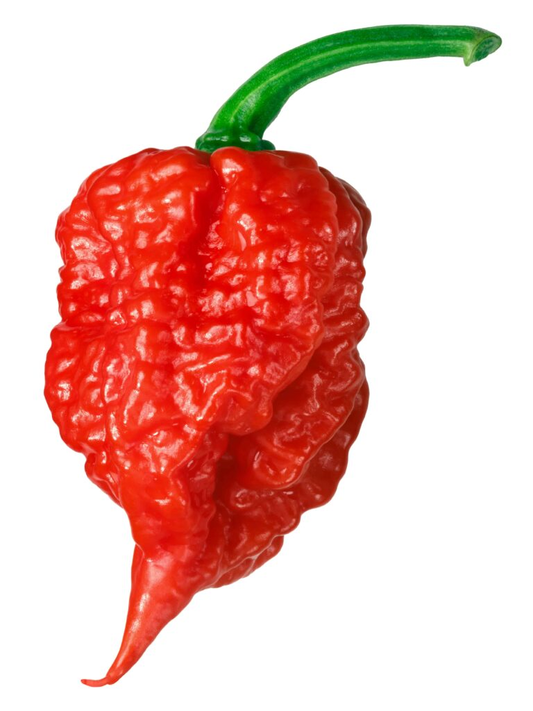 what is the hottest pepper on the scoville scale, carolina reaper
