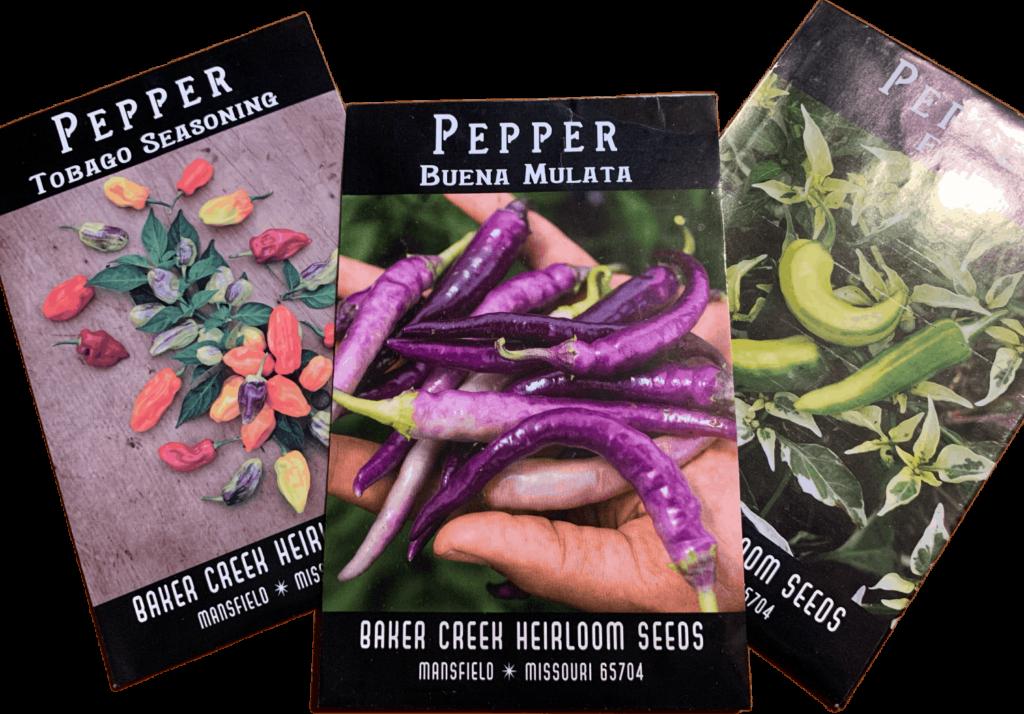 Rare pepper seeds and heirloom varieties