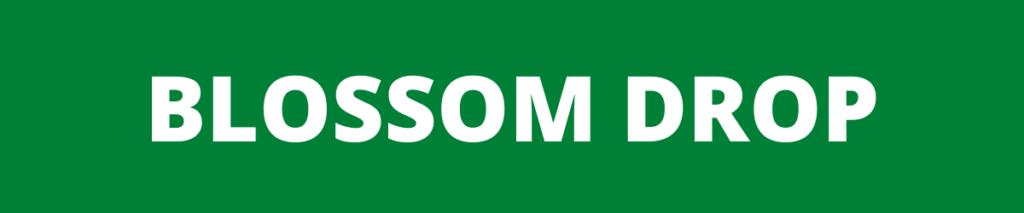 blossom drop banner