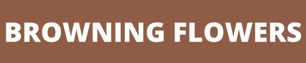 browning flowers banner