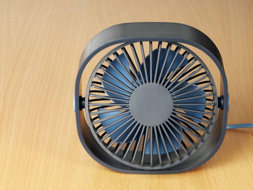 small fan for seedlings
