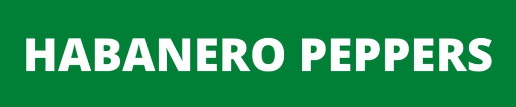 habanero peppers banner