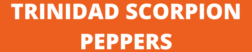 trinidad scorpion peppers banner