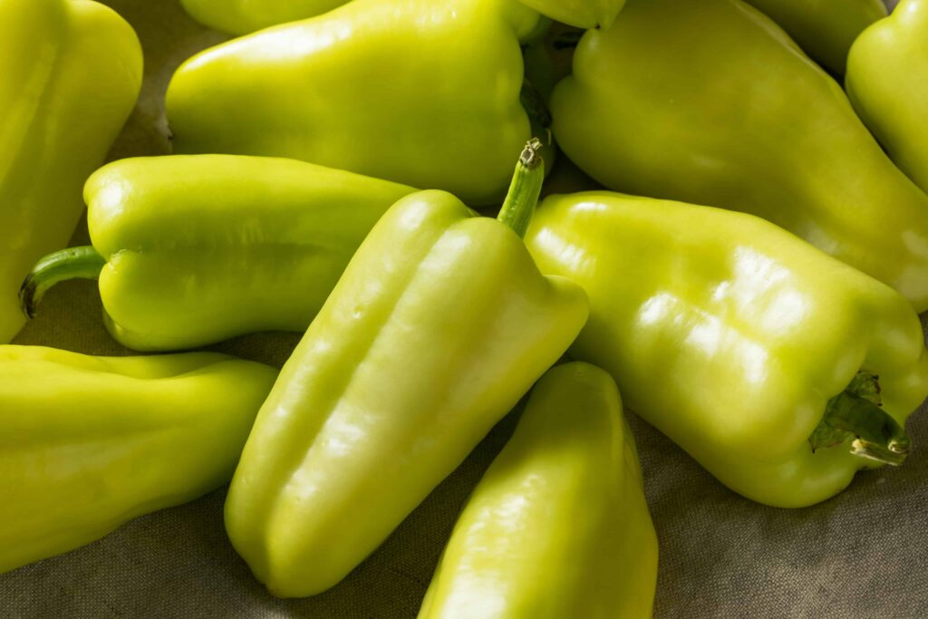 when to pick gypsy peppers